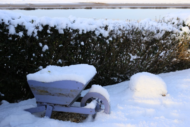 wheel barrow in the snow