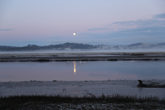 misty morning with the full moon and swans on the river view from cottage
